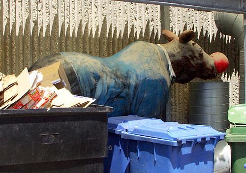 Time Moose Scape goes dumpster diving