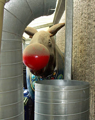 Rudolph the red-nosed moose