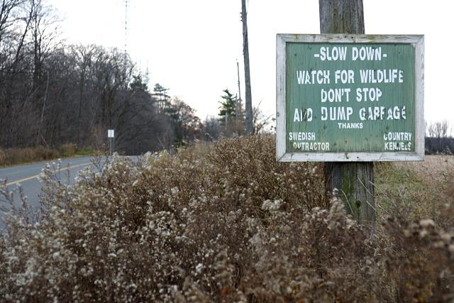 Informal signage on Reesor Road