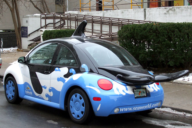 Shamu the Beetle (rear view)