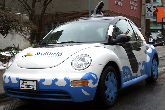 Shamu the Beetle (front)