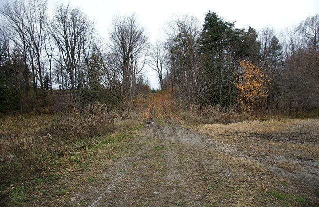 Passmore Avenue looking west toward Gordon Murison Lane