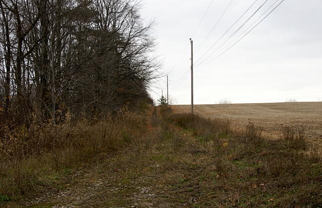 Passmore Avenue looking east, just east of Gordon Murison Lane