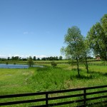 As you leave the last bits of suburbia behind, King Township becomes serious horse country, and the horses who live out here have some of the best views and poshest paddocks around.