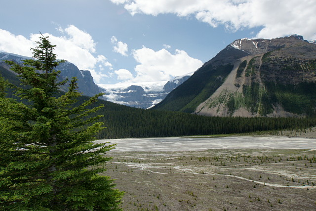 icefields-parkway-08692s