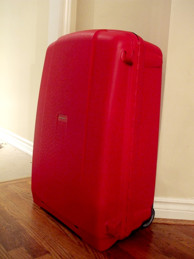 Samsonite 30-inch Flite case