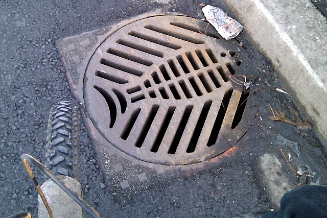 Fishy catch basin grate