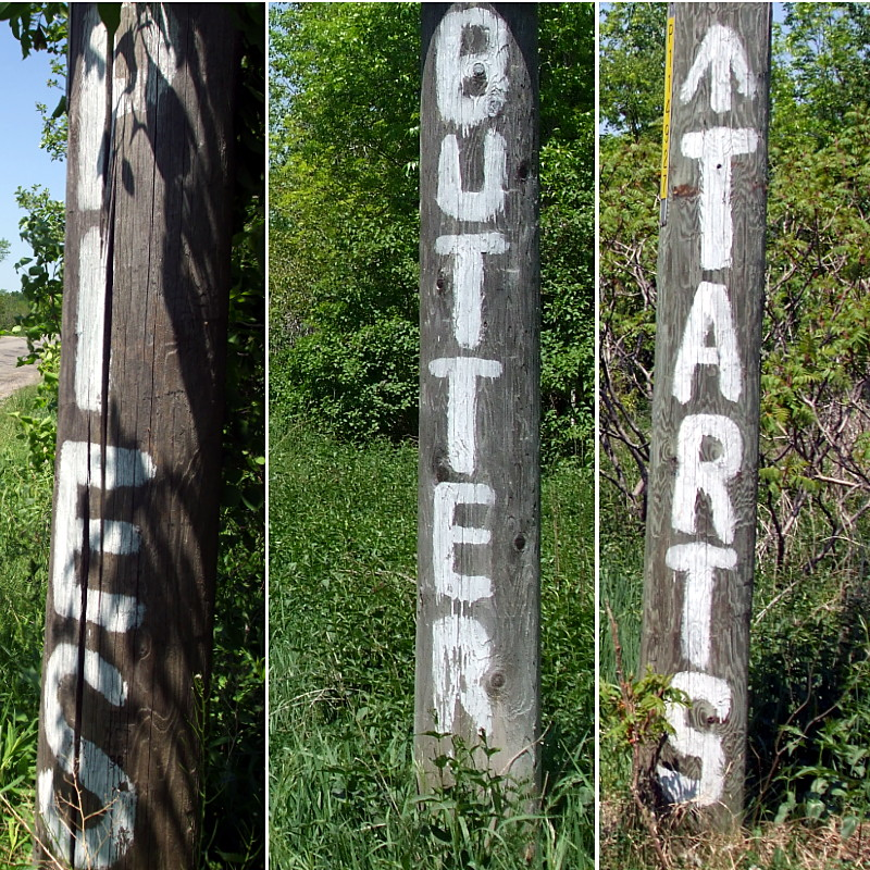 Hydro poles point the way to pies and butter tarts