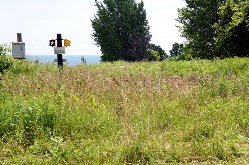 Pedestrian crossing in a field