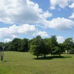Peterborough to Omemee rail trail