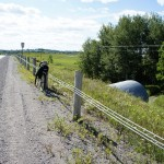 Peterborough to Hastings rail trail crossing at County Road #2