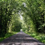 Cloverdale Line near Peterborough