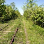 A rocky and rutted single track runs alongside the unused tracks for the first kilometre or so from Technology Drive.