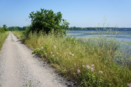 A causeway carries the Millennium Trail across a lake.