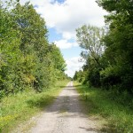 Straight, flat, relatively even surface; the hallmarks of a decent, if not spectacular, southern Ontario rail trail.
